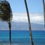 Maui Beaches – A Handful of the Best