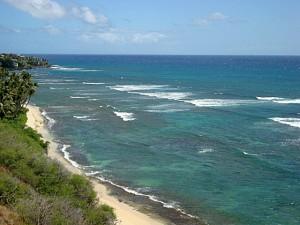 Diamond Head Lookout – Whales and Waves near Waikiki
