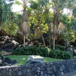 Culture and History in Keauhou
